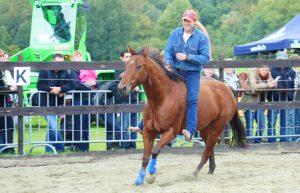 Steve op paard