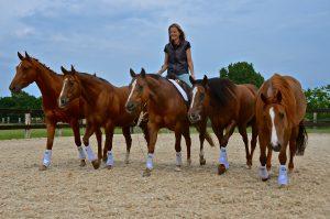 Wendy met stel paarden